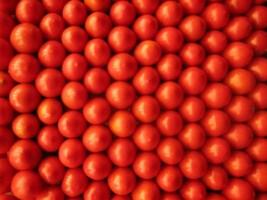 tomates recubriendo espacio 2 320x200